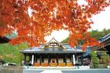 秋のお彼岸写真